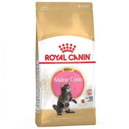Royal Canin Cicatáp Breed Maine Coon Kitten  2Kg